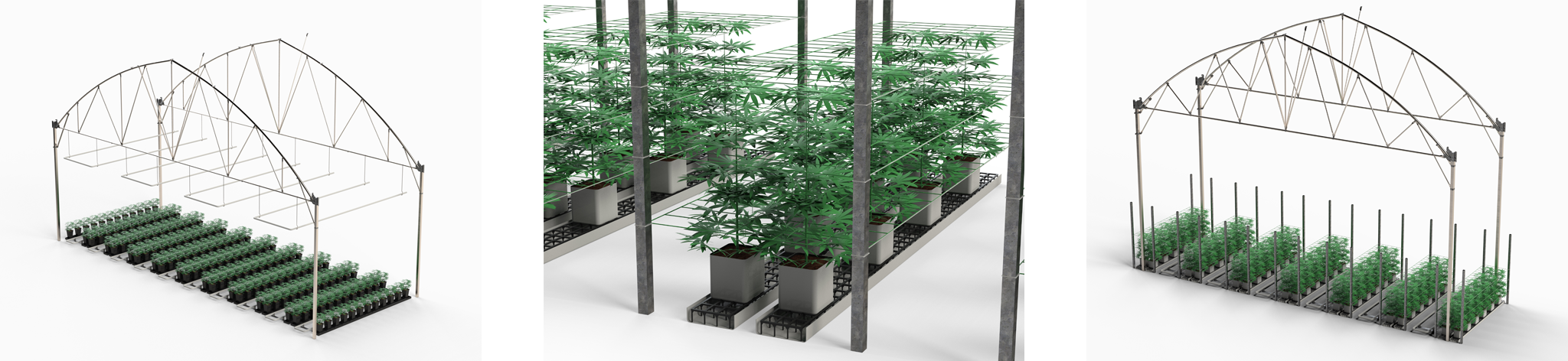 Cannabis Medicinal - JHuete